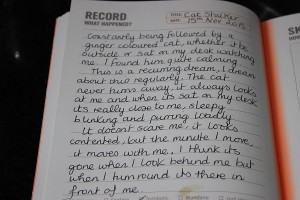Silentnight Meaning Of Dreams Record1